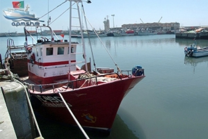 Regras da 'carta por pontos' desagradam aos pescadores